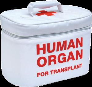 alle-normative-del-settore-trasfusionale